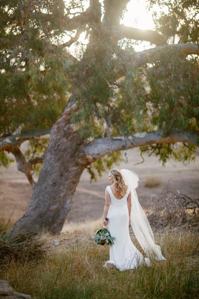 Portrait of the bride by herself in the field with dry grass and gumtrees