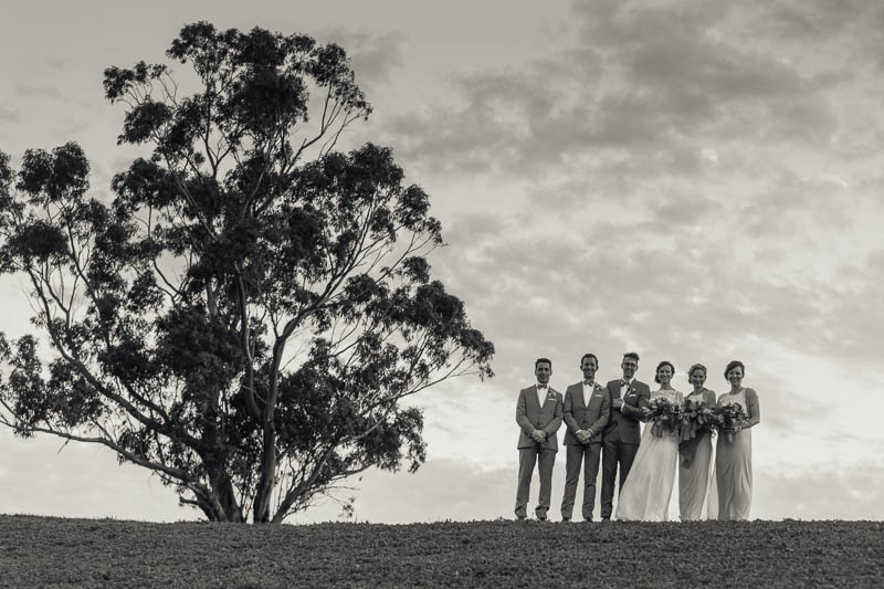 The bridal party standing in front of Mt Sturgeon
