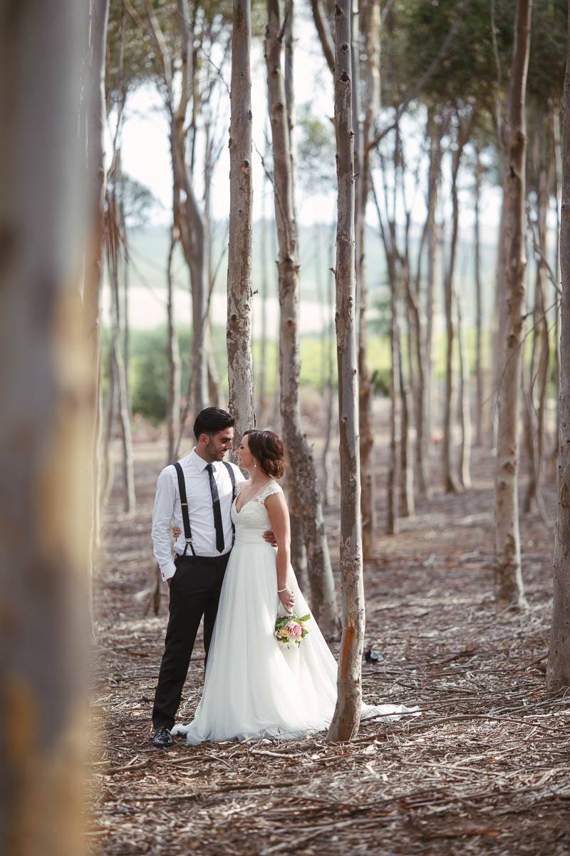 Wedding couple standing in the middle of tall thin gumtrees on the way to the reception