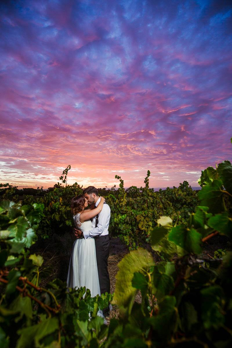 In the vines with a gorgeous sunset at Clean Slate in Willunga