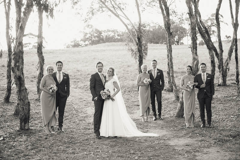 Bridal party in the gumtrees at Golding Wines, Photographed by James Field