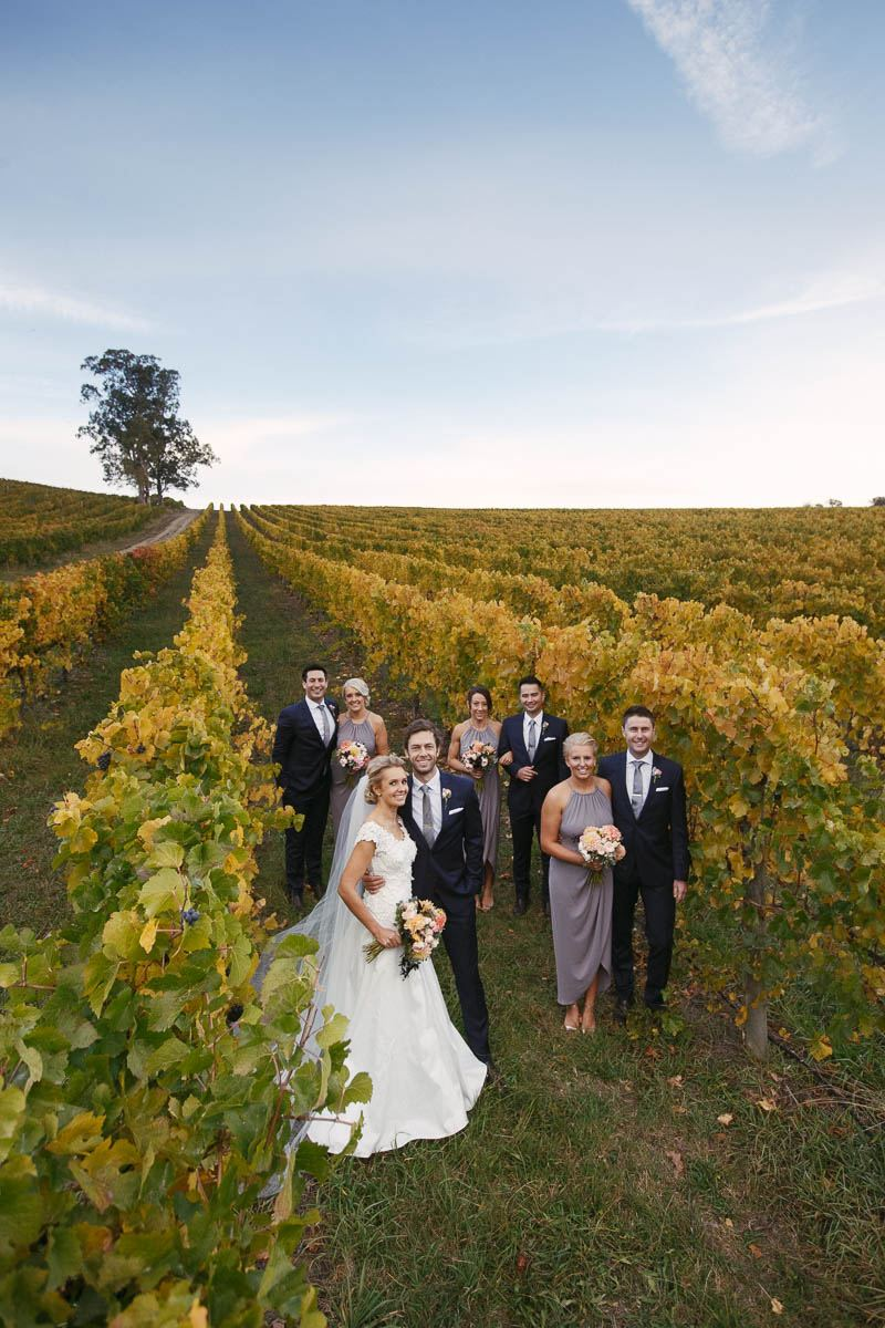 Bridal party standing in the vineyards at Golding Wines