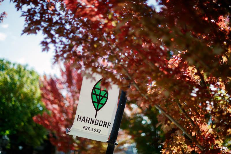 Autumn trees in Hahndorf in the Adelaide Hills