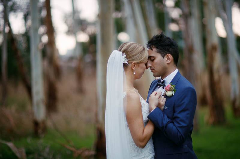 Newlyweds sharing a tender moment in the gum trees at the bottom of the Longview Vineyard property