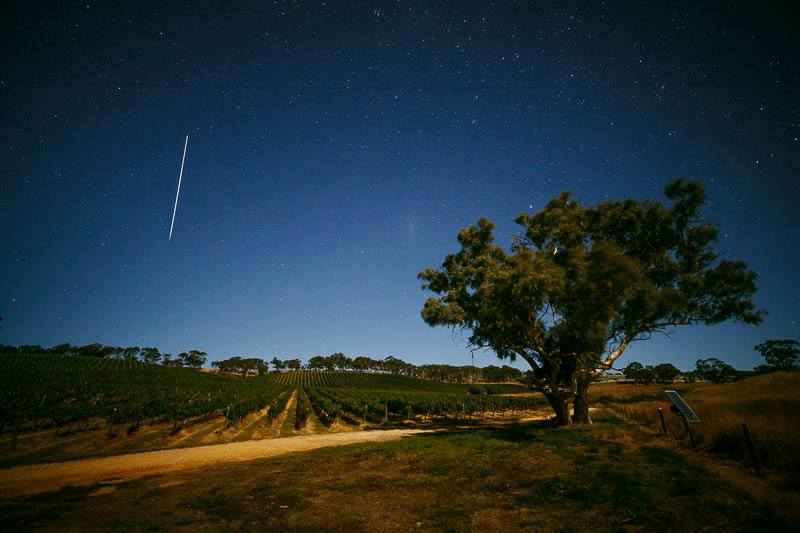 Night time photo of Longview Vineyard with a shooting star