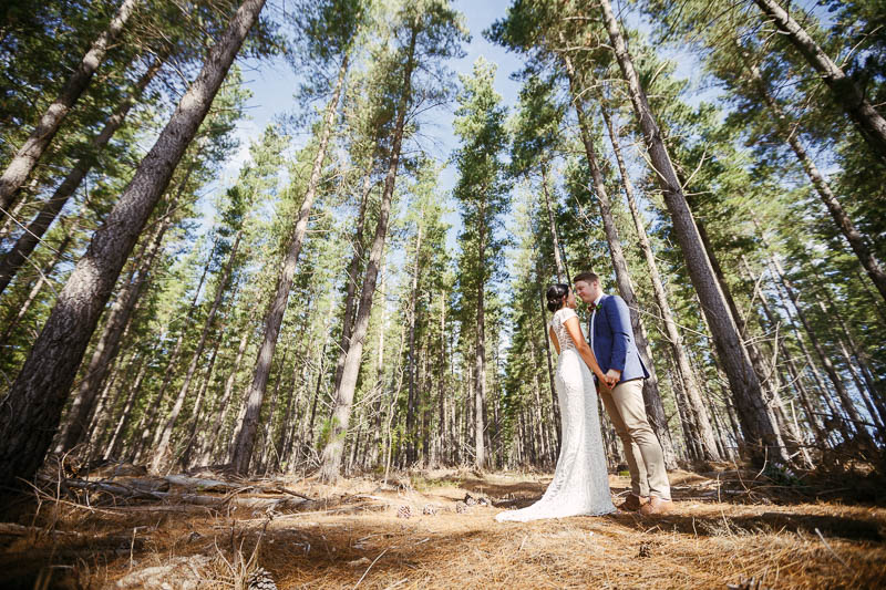 Bride and groom sharing a moment together in a pine plantation at Kuipto Forest